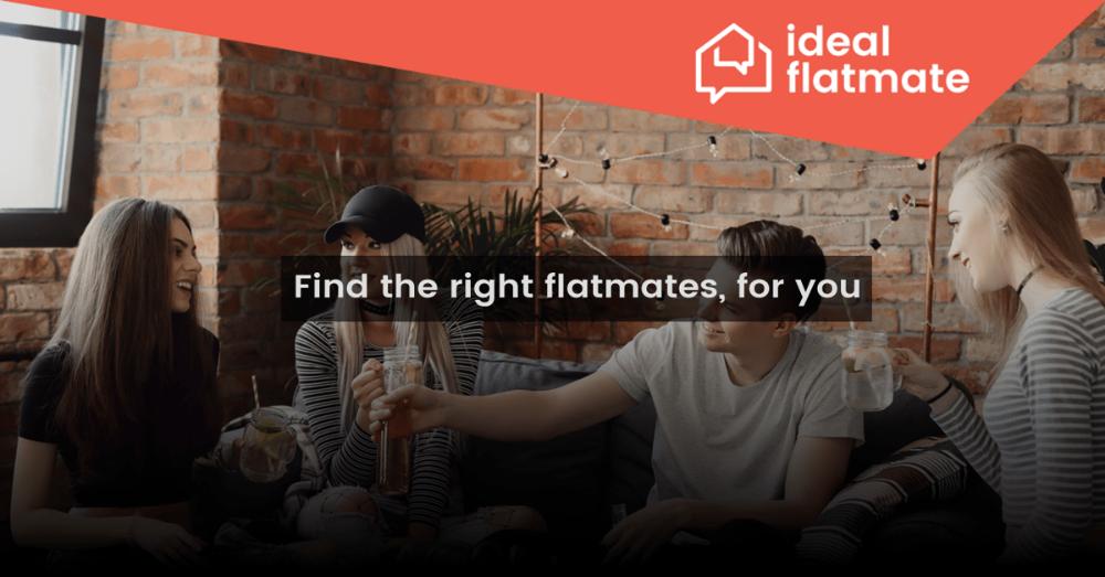 ideal flatmate screen-min.png