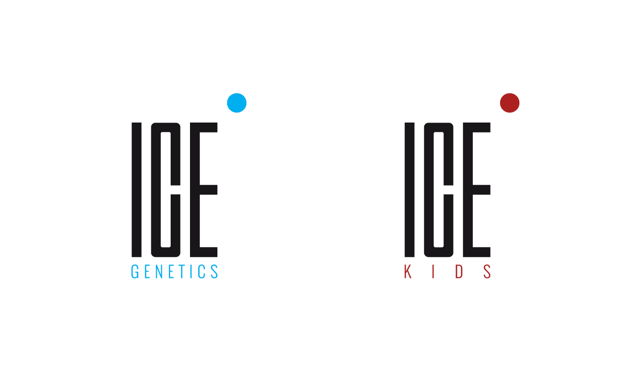 ICE Models Cape Town logo 4 - helloVlad.studio