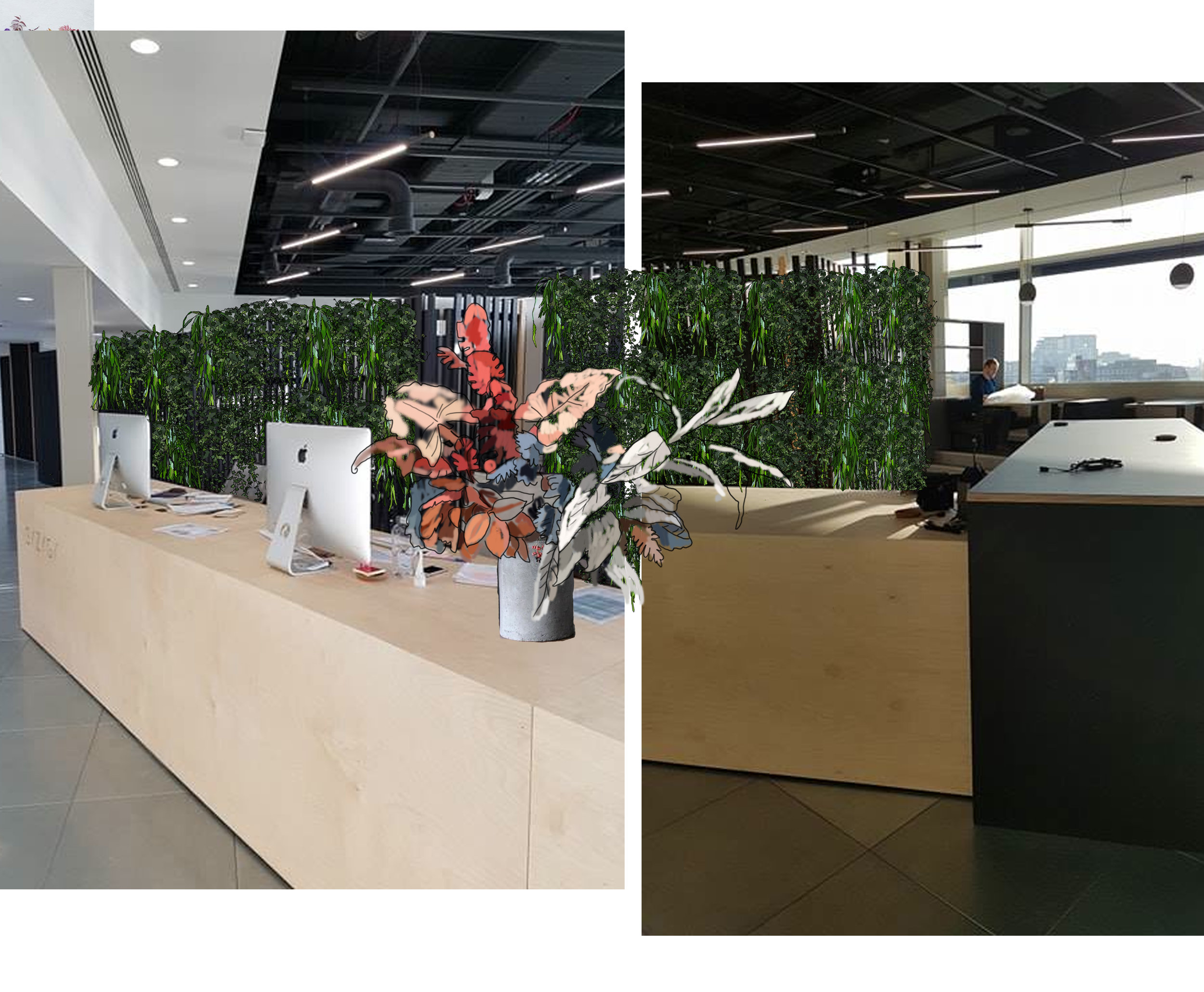 drawings for offices plantscaping