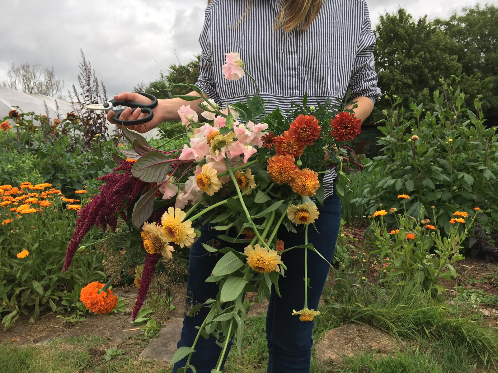 Nice bunch ethical floral design studio flower garden by Sula Somerset Compton Dundon organic cuttings