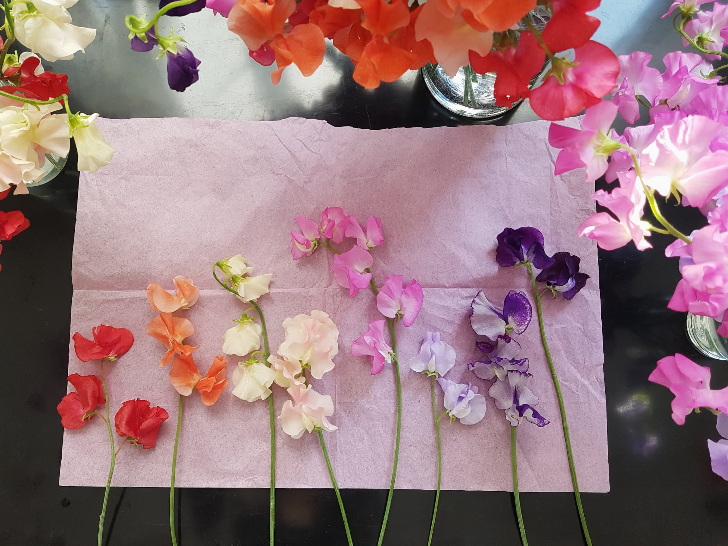 Nice bunch ethical floral design studio flower garden by Sula Somerset Compton Dundon organic cuttings sweet pea.jpg