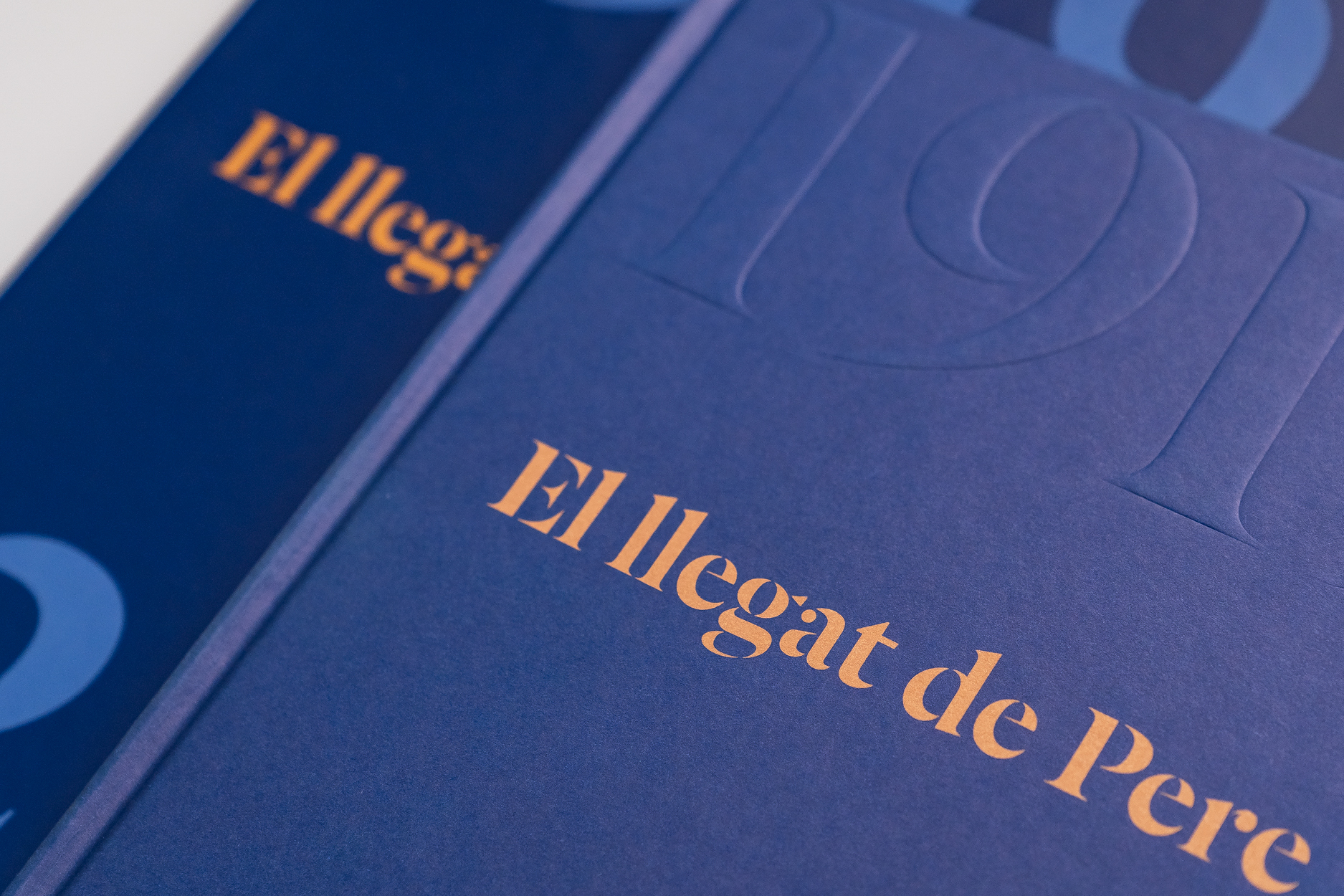 Llibre_El llegat de Pere Mir_web3.jpg