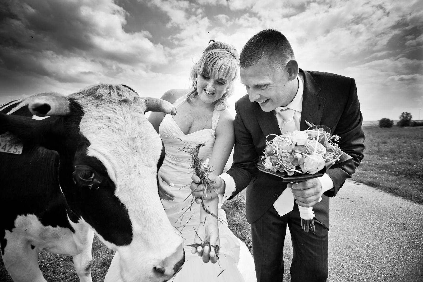 trouwshoot-bruidsfotografie-trouwfoto-feestfotografie-trouwreportage-Alex en Evelyn526.jpg