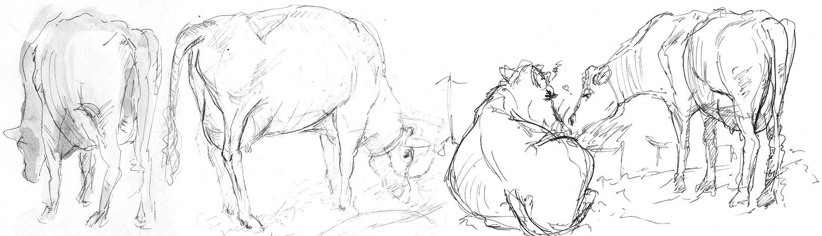 Animal studies, 2010