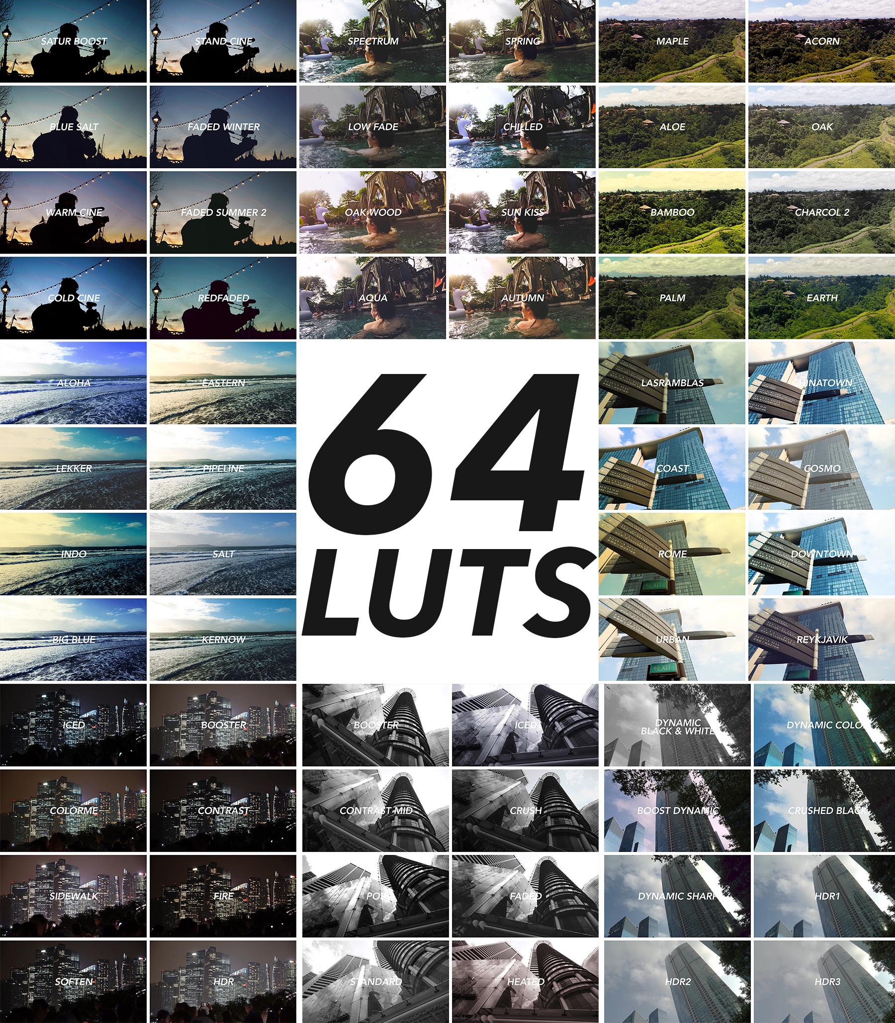 64 LUTS.jpg