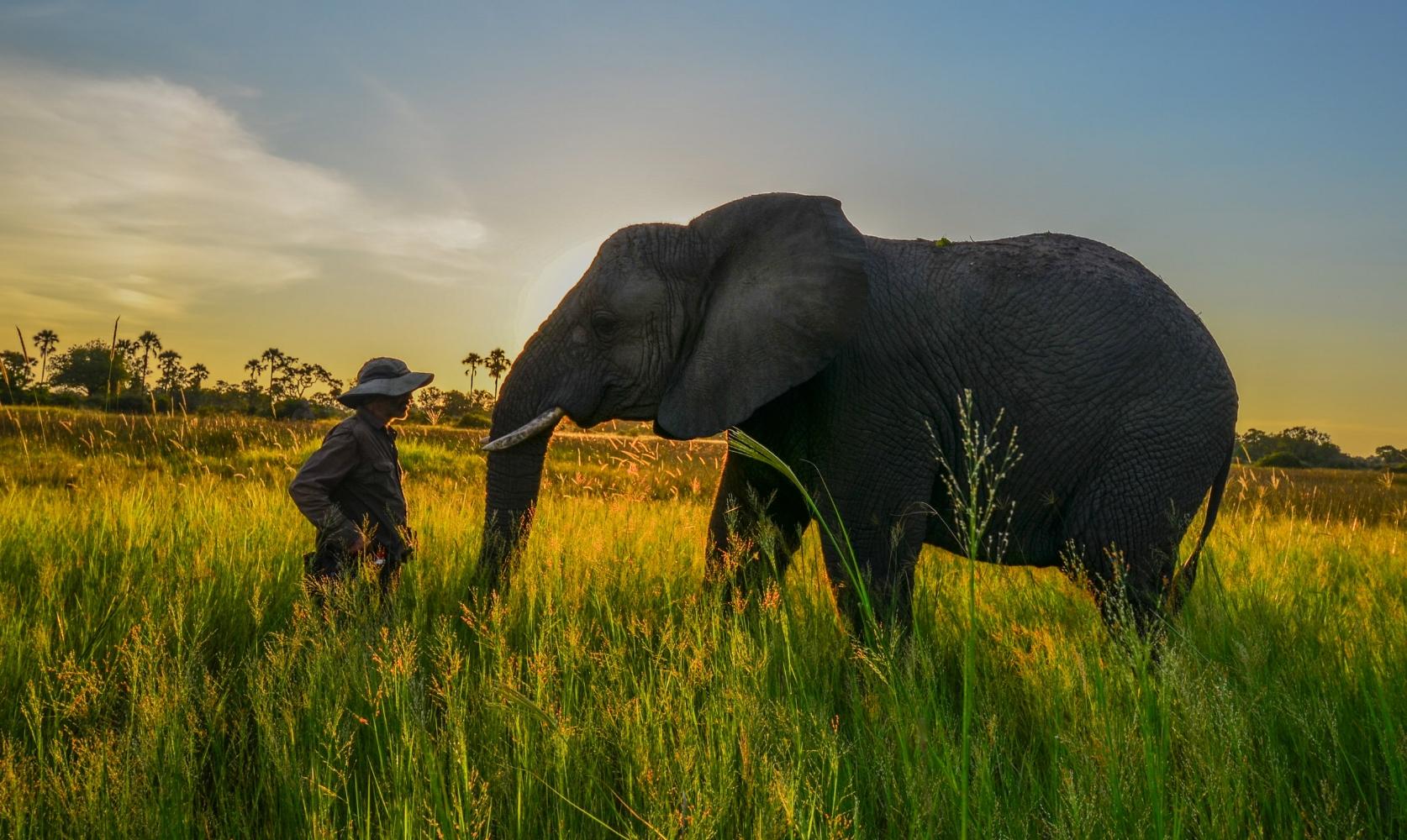 Thembi with Doug in the Okavango sunset