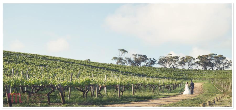 Coriole-Winery-Wedding-120.jpg