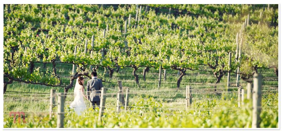 Coriole-Winery-Wedding-1211.jpg