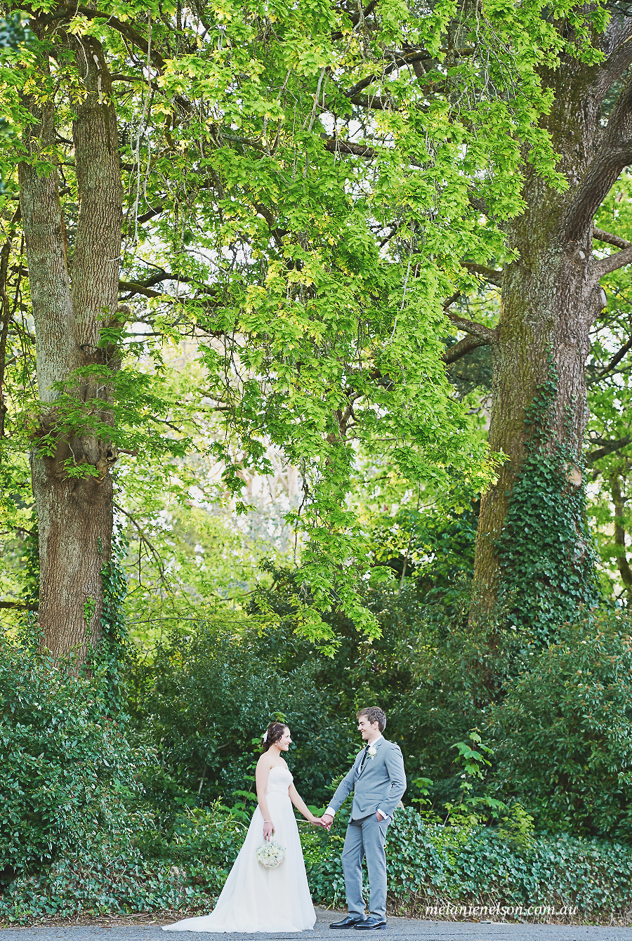 mounty lofty house wedding 12