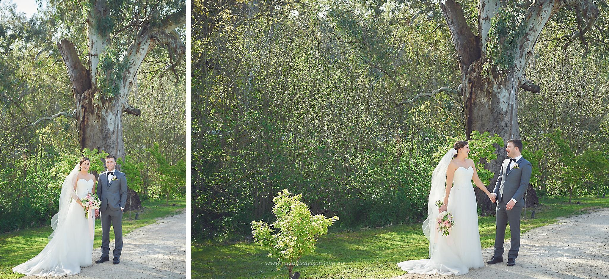 howards_vineyard_wedding_0011.jpg