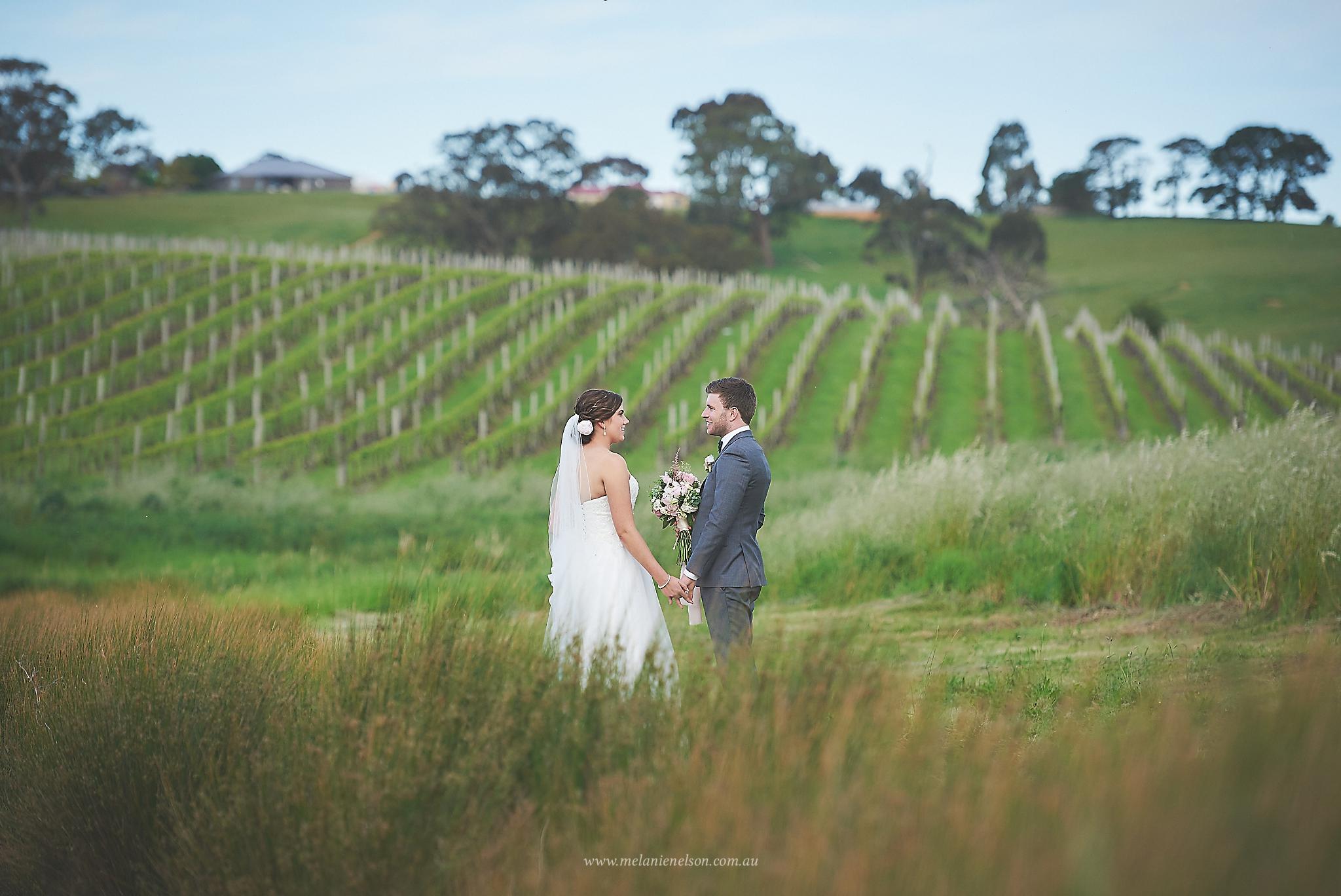 howards_vineyard_wedding_0020.jpg