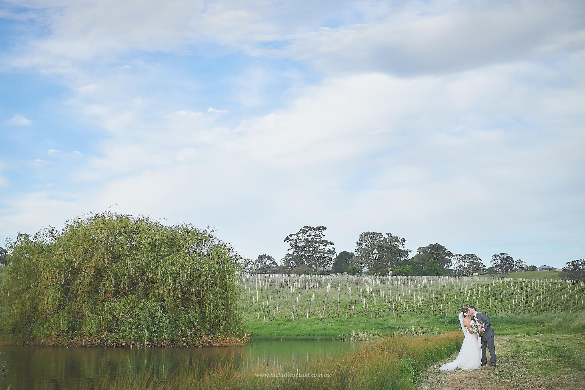 howards_vineyard_wedding_0021.jpg