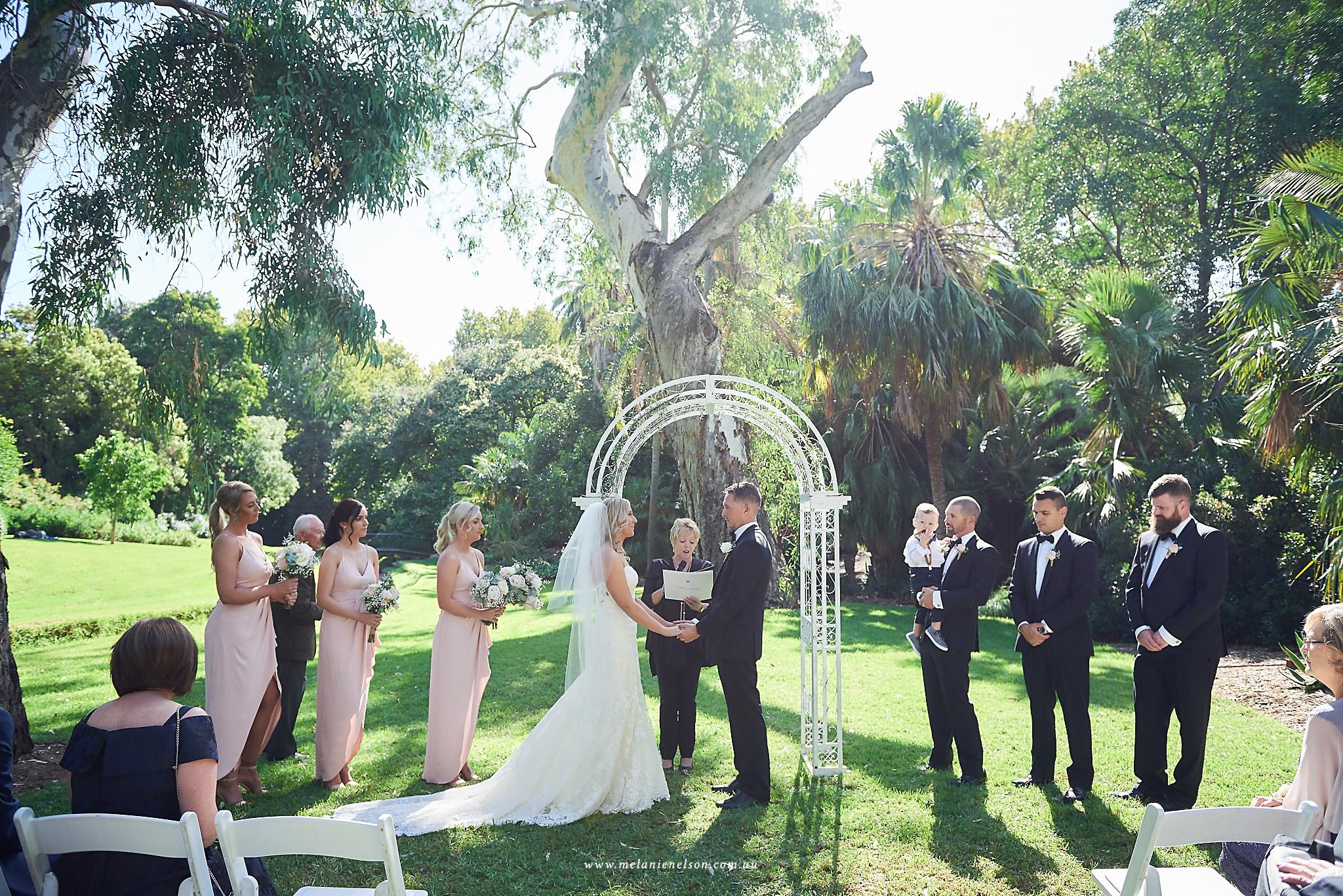 adelaide_botanic_gardens_wedding_0025.jpg
