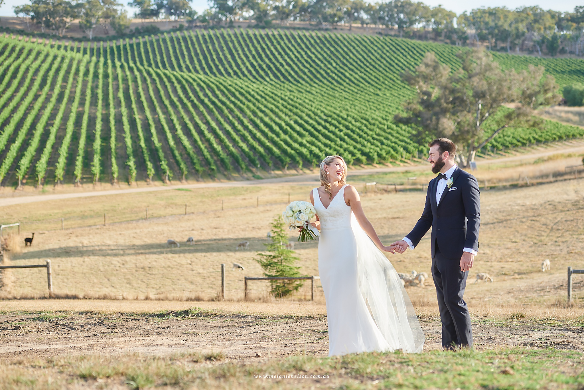 longview_vineyard_wedding_0058.jpg