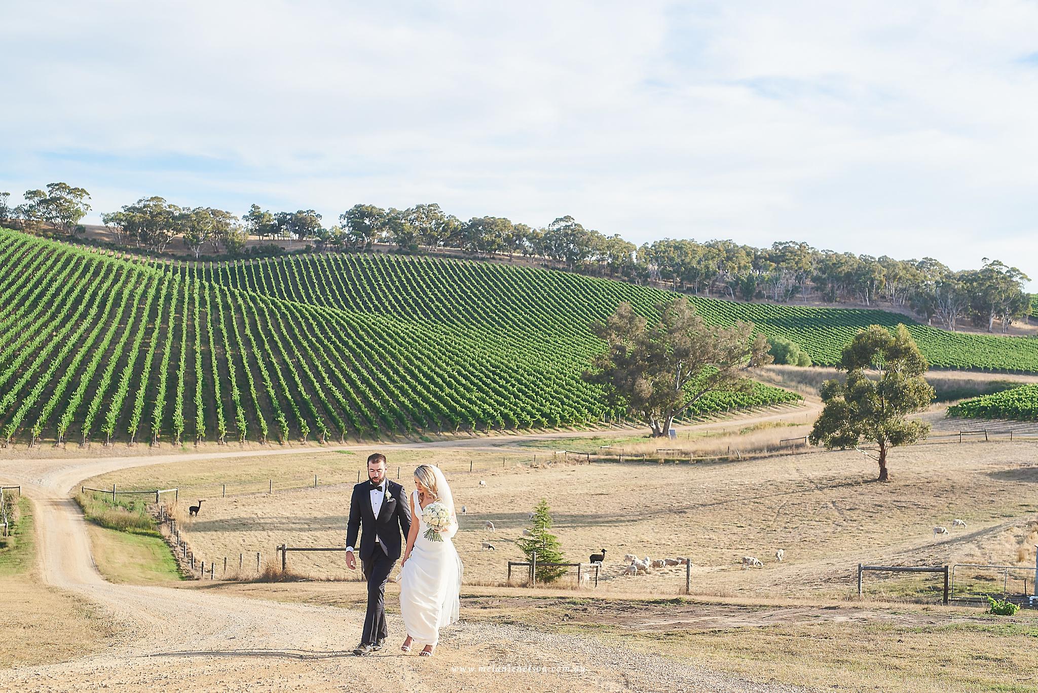 longview_vineyard_wedding_0059.jpg