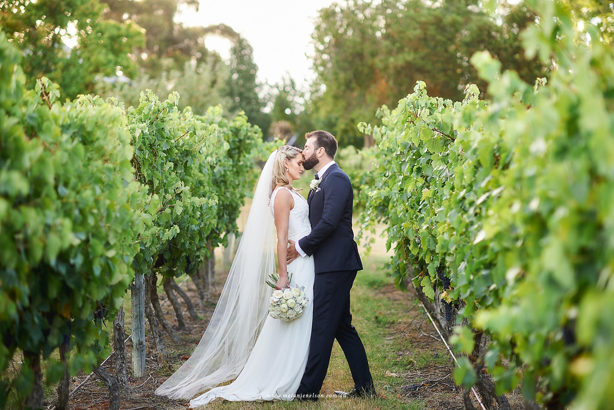 longview_vineyard_wedding_0073.jpg
