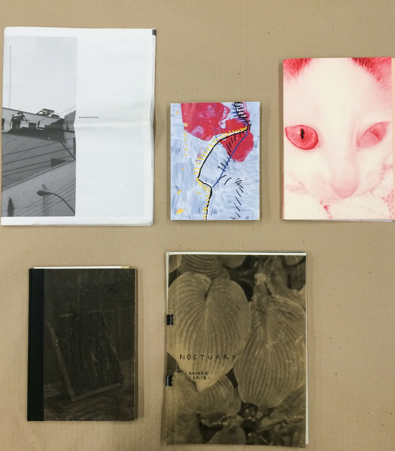 """From left to right: """"En la linea de fuego"""" by Anastasia Mityukova, """"Here, Waiting"""" by Maroussia Prignot and Valerio Alvarez, """"Eating Magma"""" by Elena Aya Bundurakis, """"Zilverbeek"""" by Lucas Leffler (winner) and """"Noctuary"""" by Renée Lorie."""