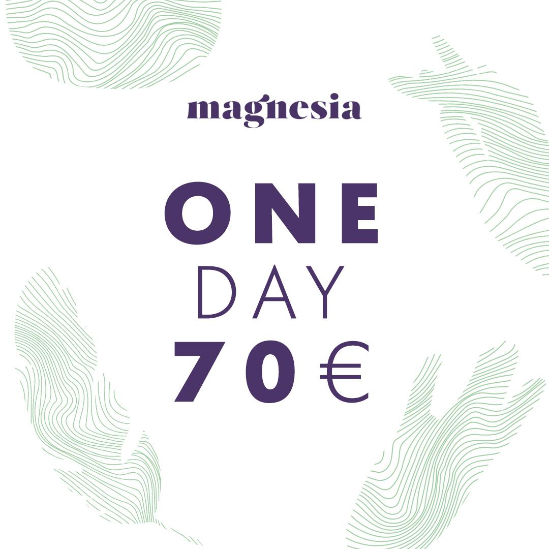 1-day-ticket.jpg