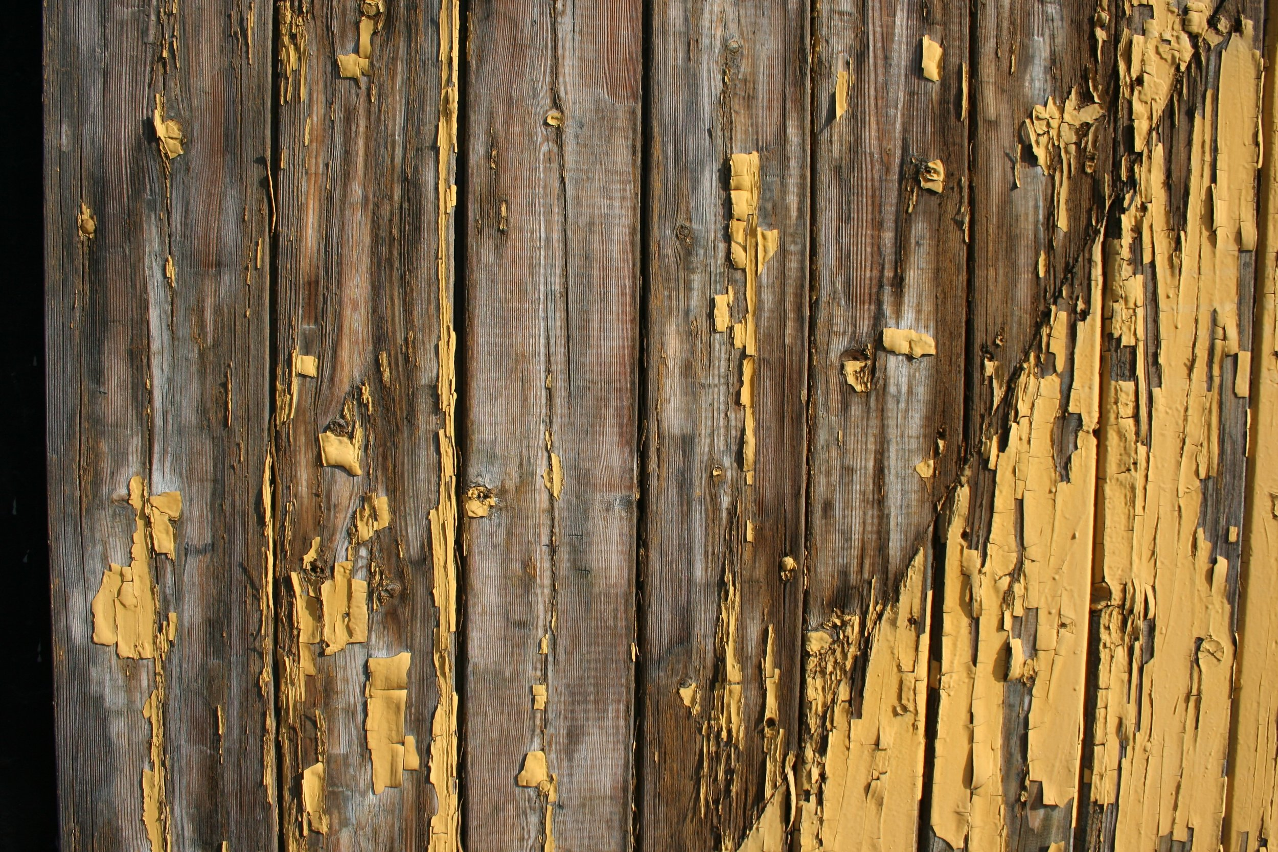 Should I Paint My Wooden Fence?