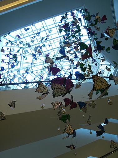 BUTTERFLIES, Los Molinos Mall, Medellin, Colombia