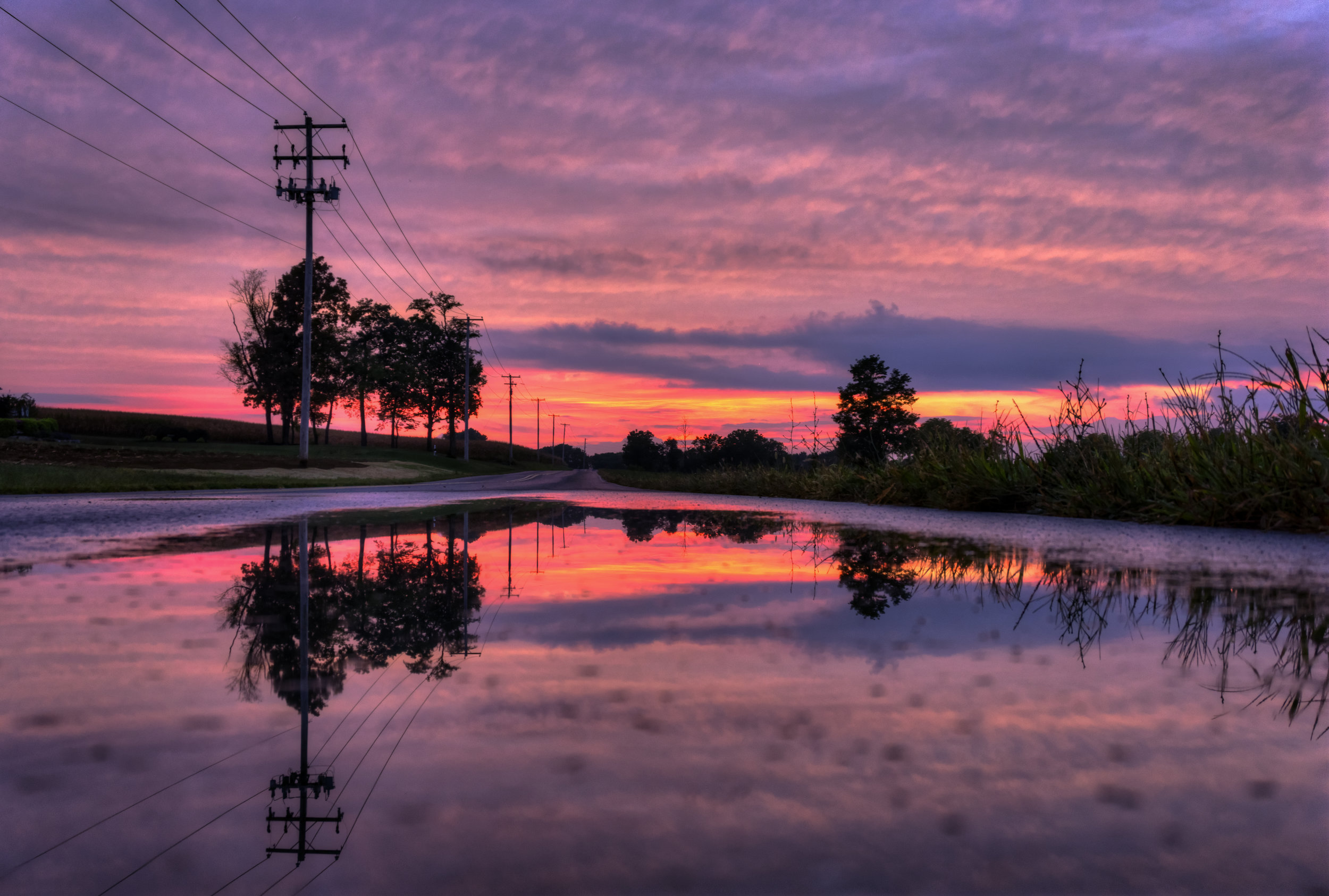 Sunset reflecting in the puddles on Saw Mill Rd. near Farmersville