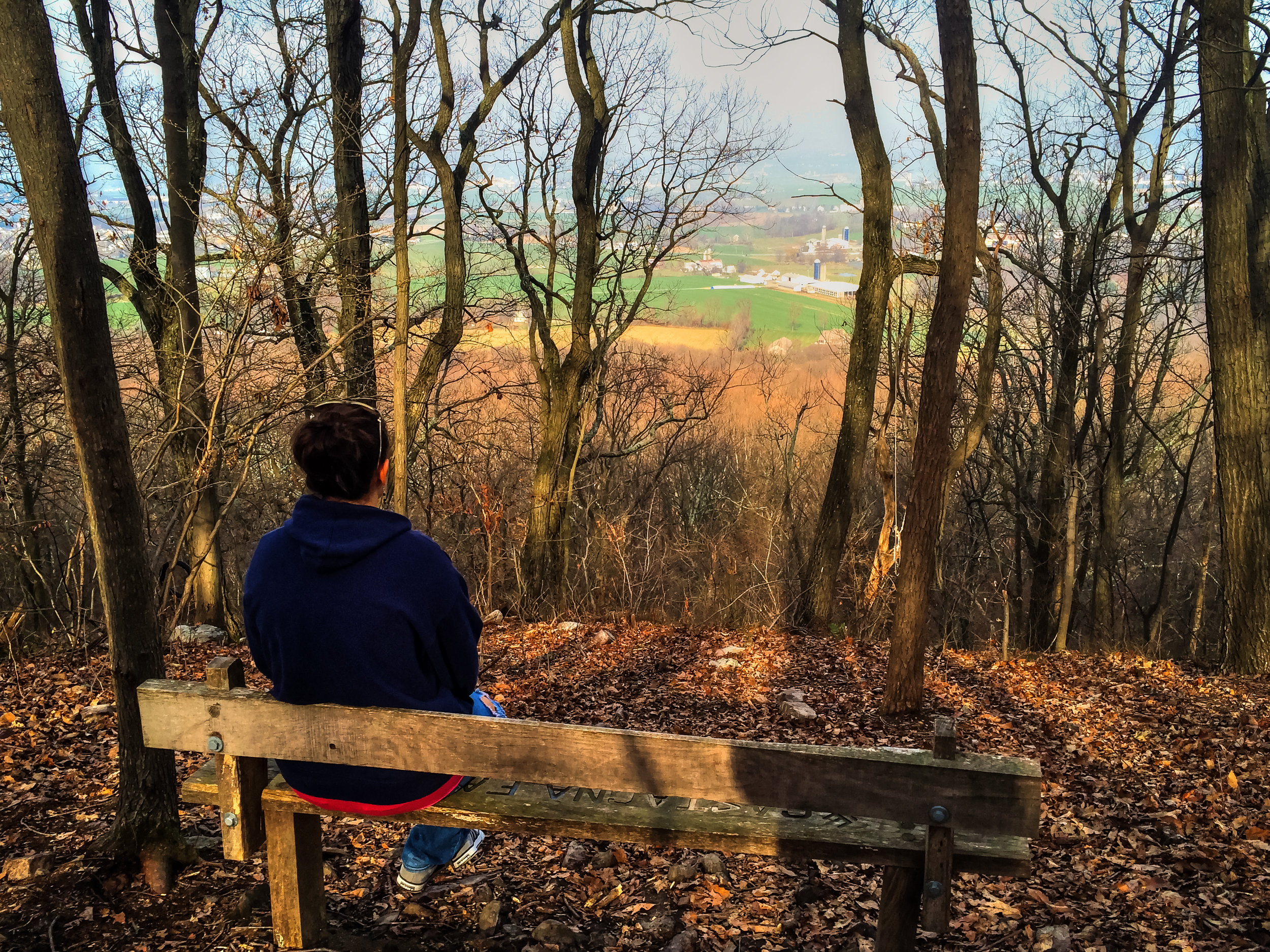 Overlook at Welsh Mountain Preserve