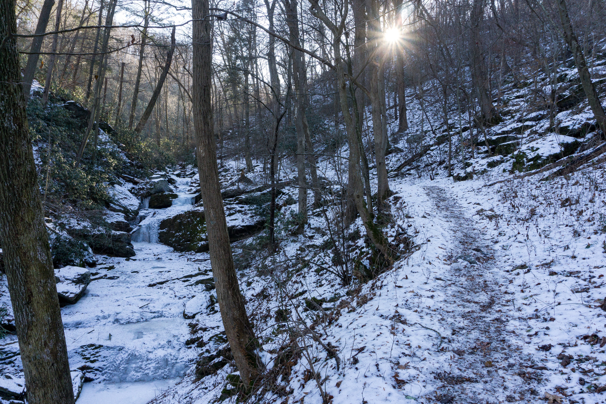 Mason Dixon trail Overlooking Millcreek Falls