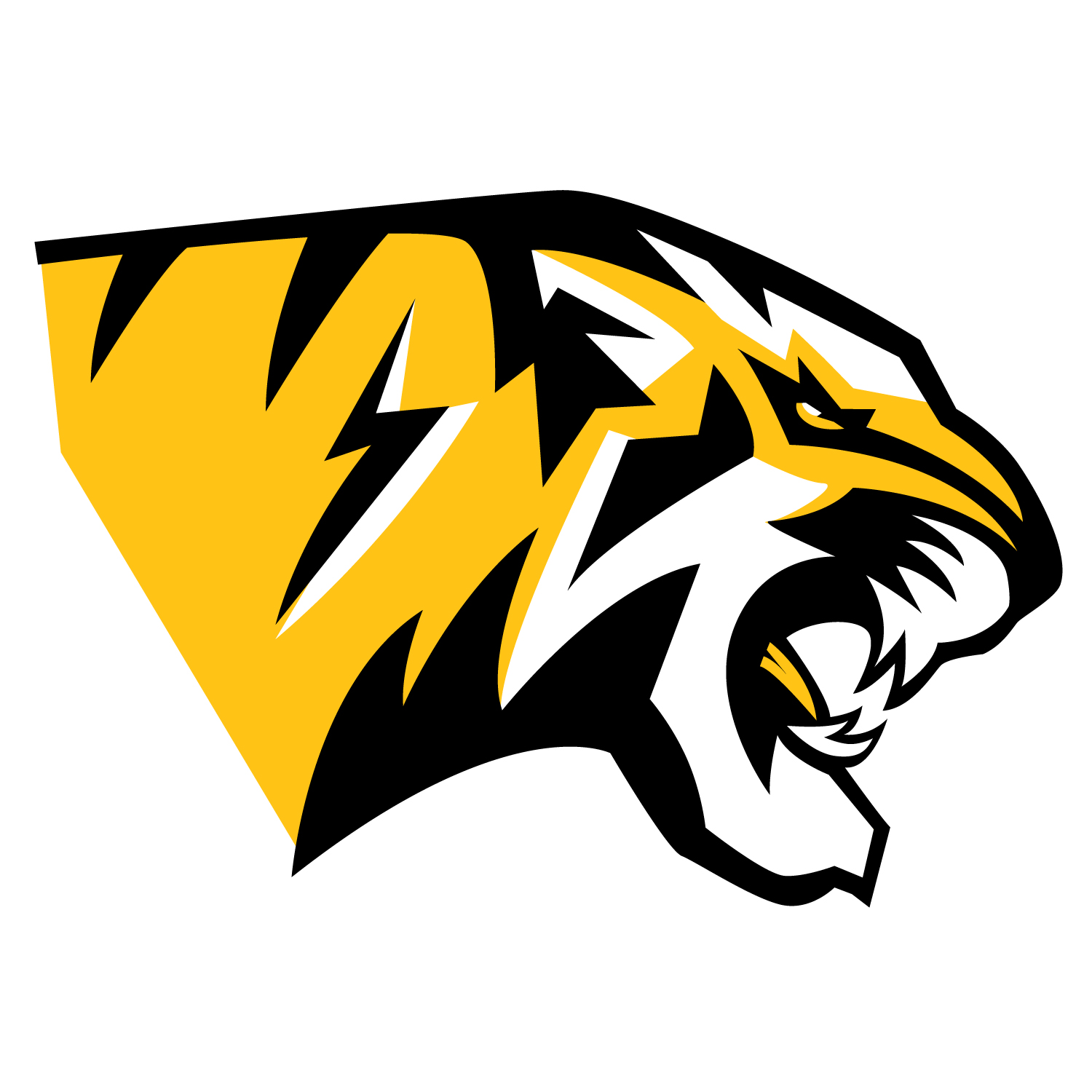 http://www.mattomlordesigns.com/blog/2016/5/5/how-to-design-a-sports-logo 2-my-design-process-step-by-step-Tiger