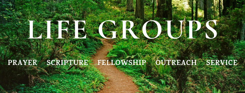 Life groups (1).png