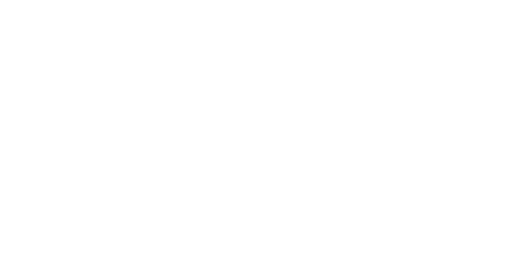 Toro Bravo Inc Logo - White on Transparent2 TIGHT CROP.png