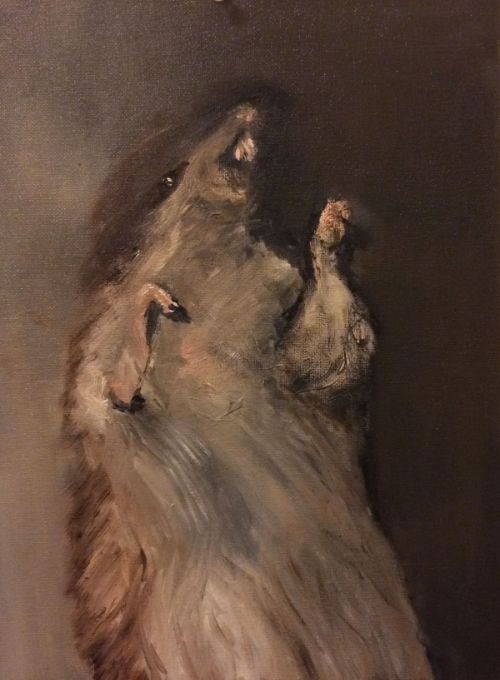 Decomposing Rat