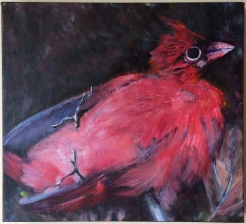 Kim's Cardinal