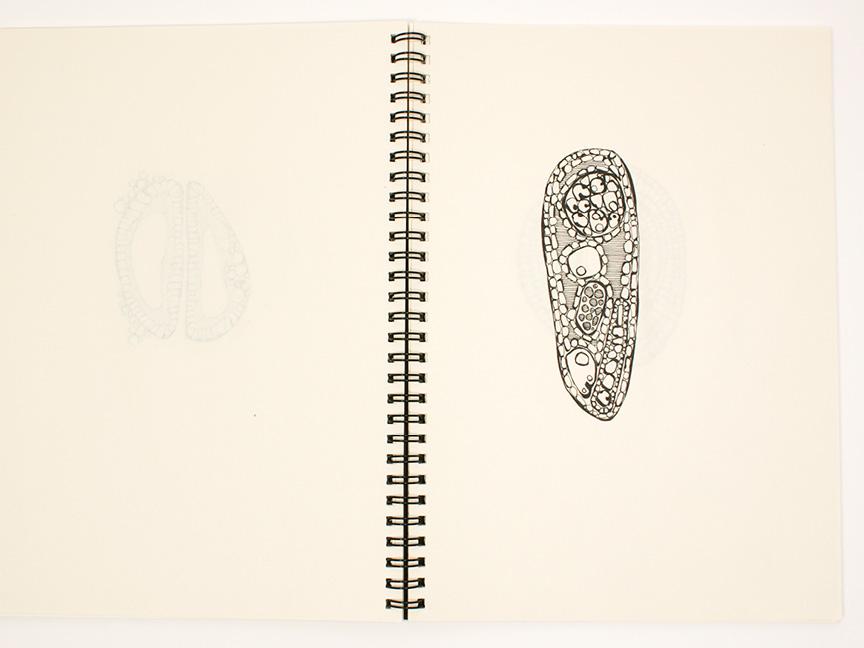 2013 sketchbook26.jpg