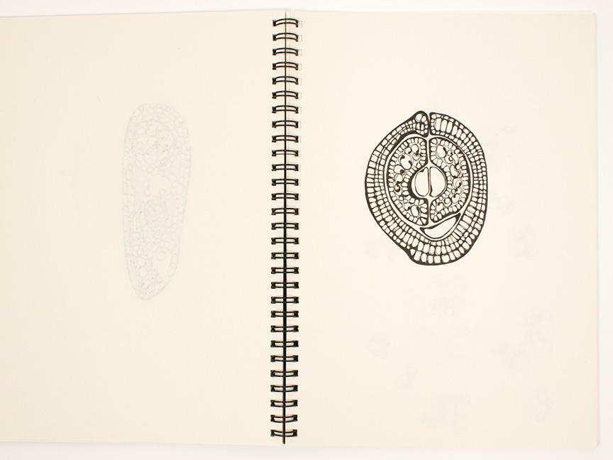 2013 sketchbook27.jpg