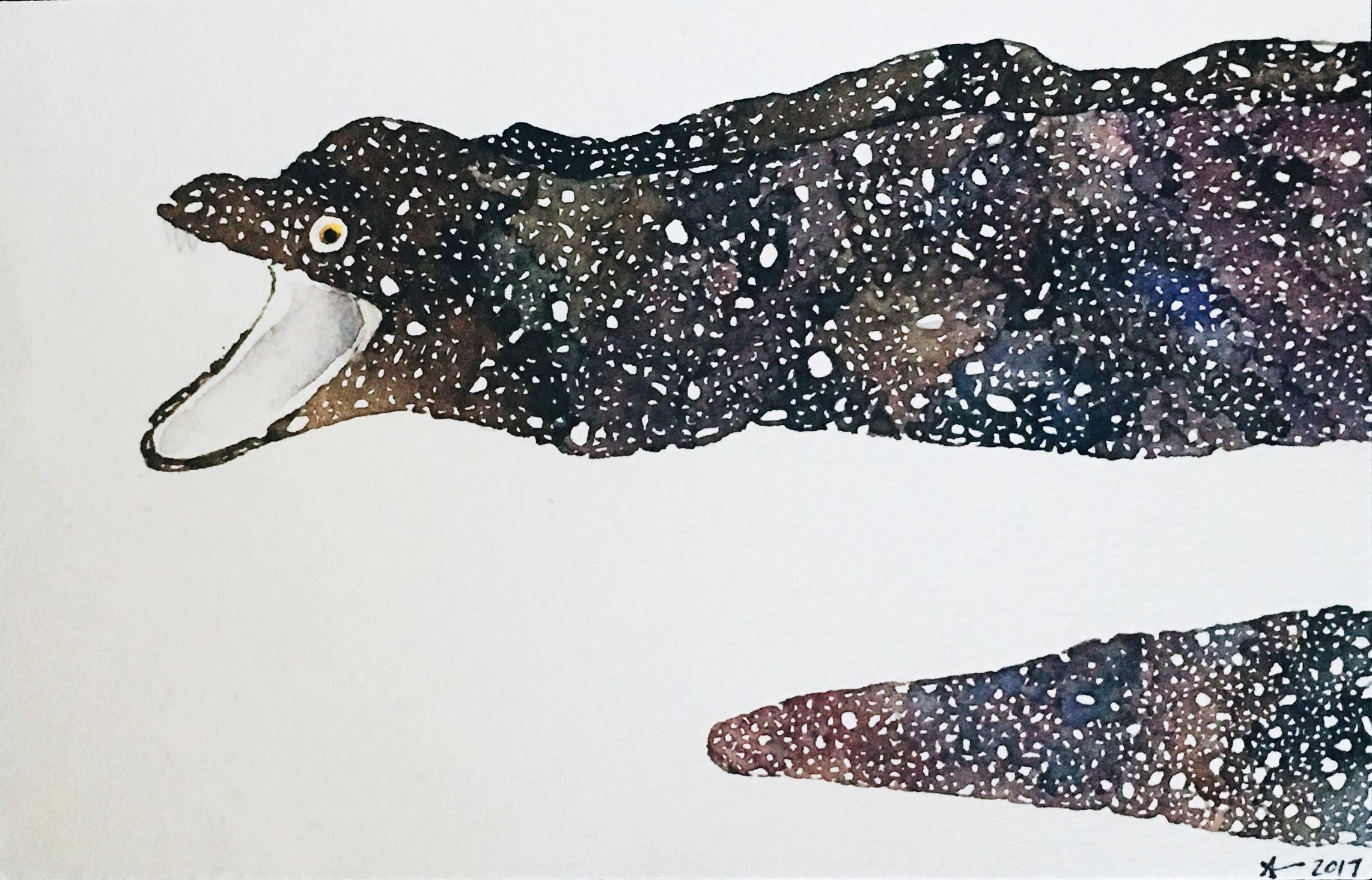 Moray Eel  watercolor, pencil