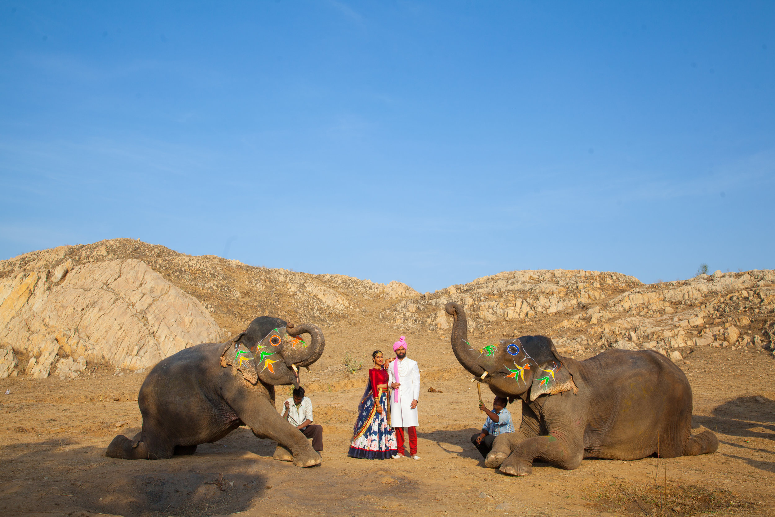 India Engagement Bride and Groom with Elephant (16).jpg
