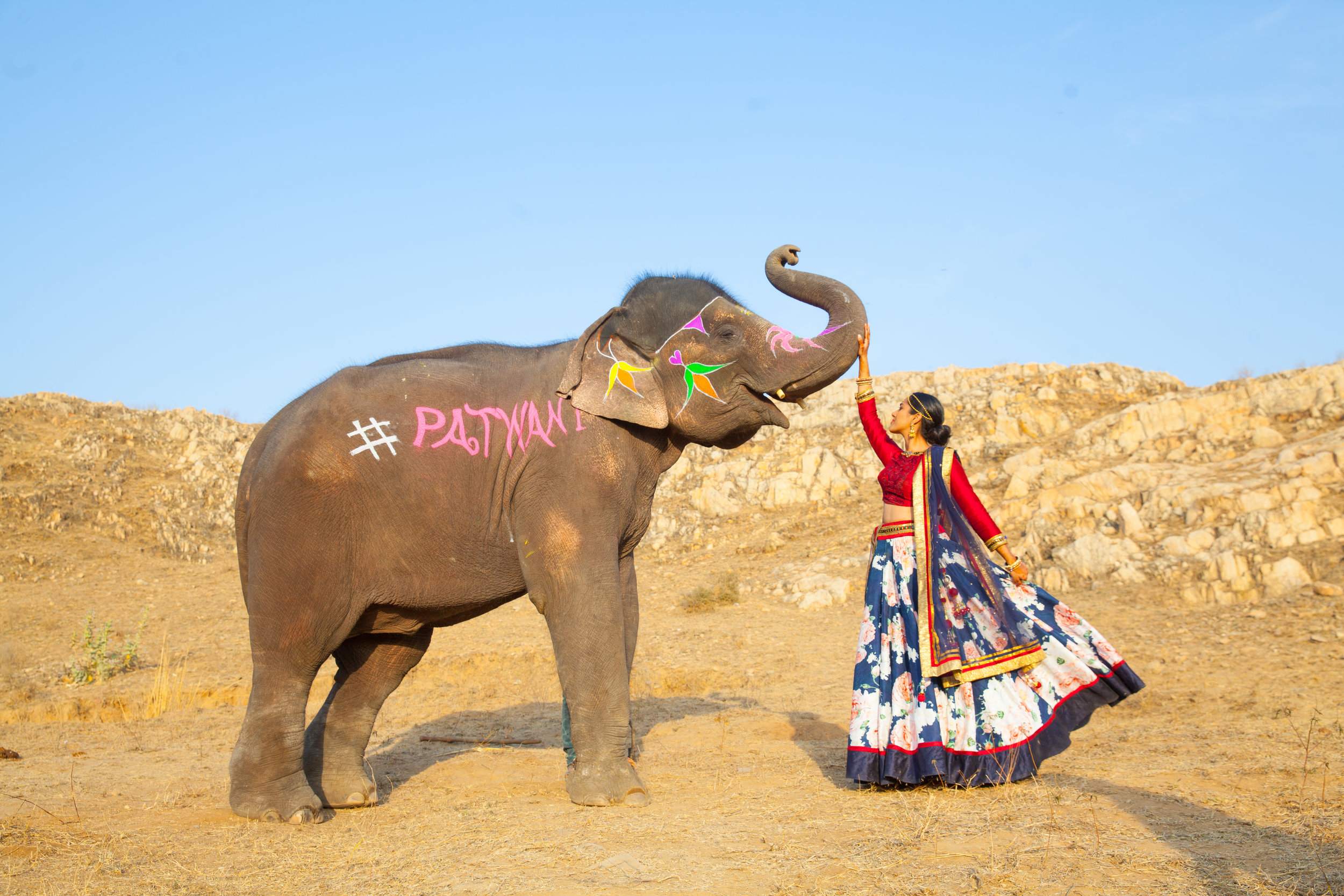 India Engagement Bride and Groom with Elephant (17).jpg