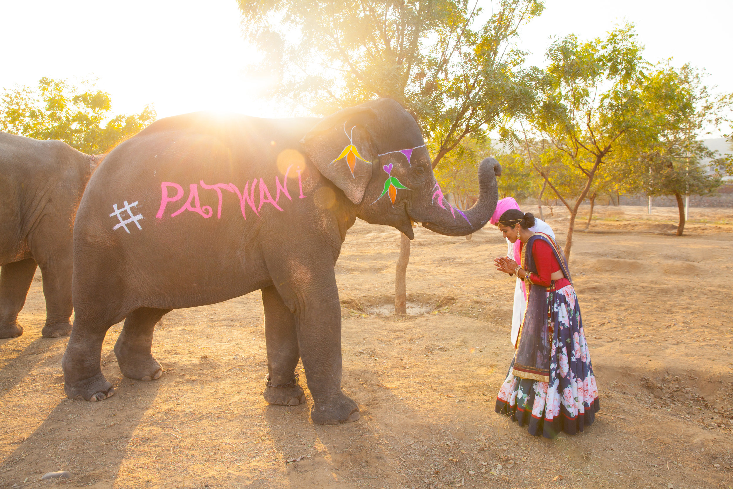 India Engagement Bride and Groom with Elephant (19).jpg