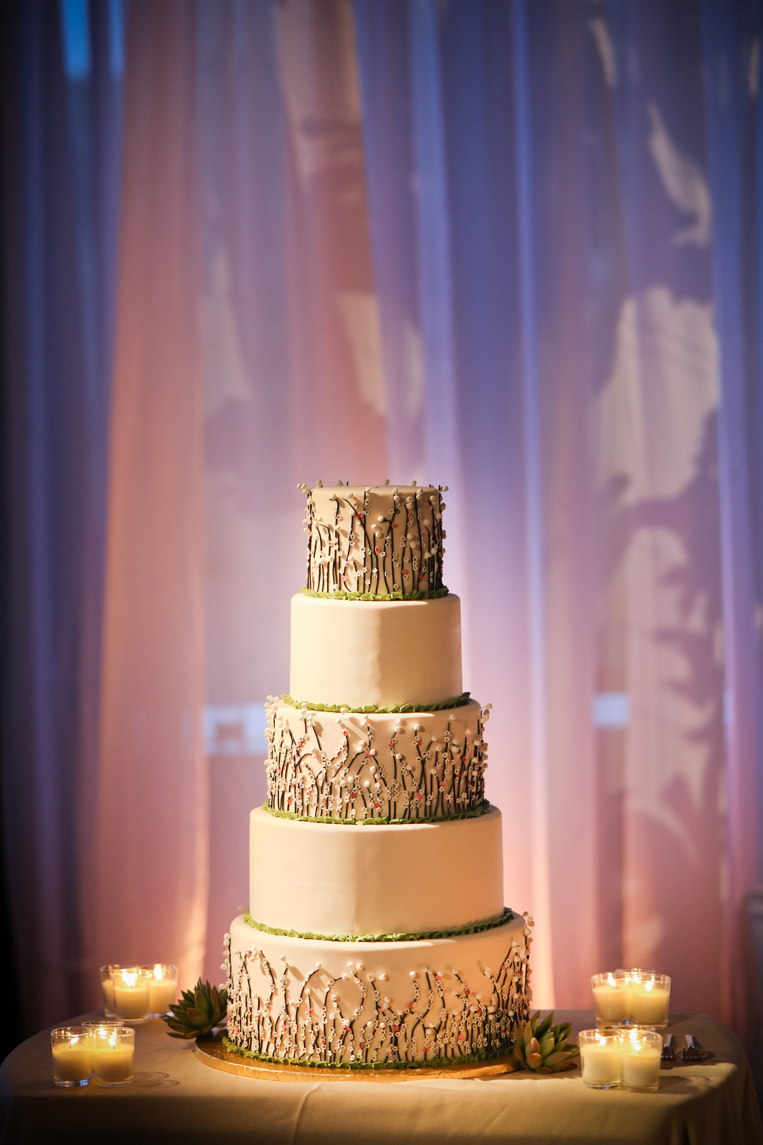 Indian Couple beautiful ceremony and colorful reception (106).jpg