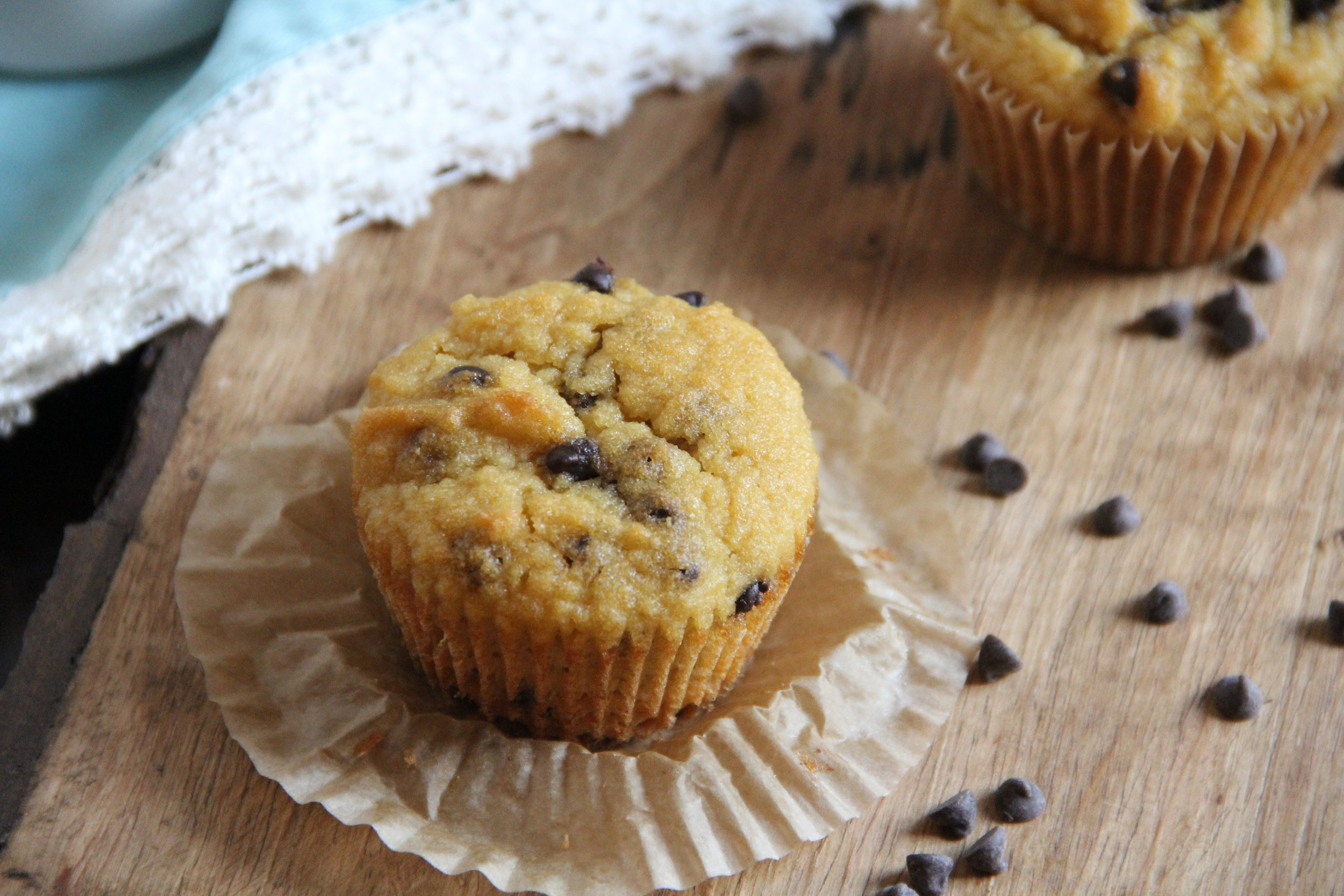 Chocolate Chip Muffins {nut-free}