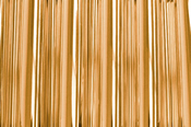 Copy of Copper