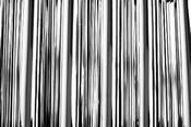 Copy of Shiny Silver