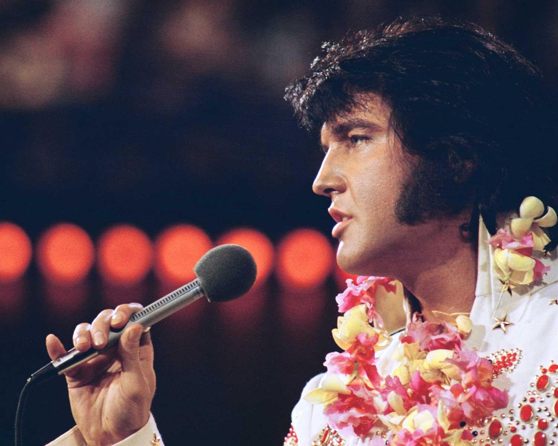 Elvis_806.jpg
