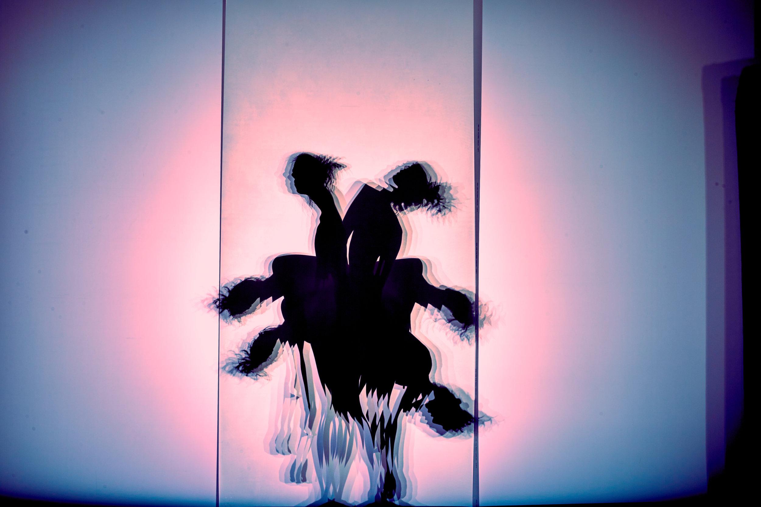 ShadowMaya 403.jpg