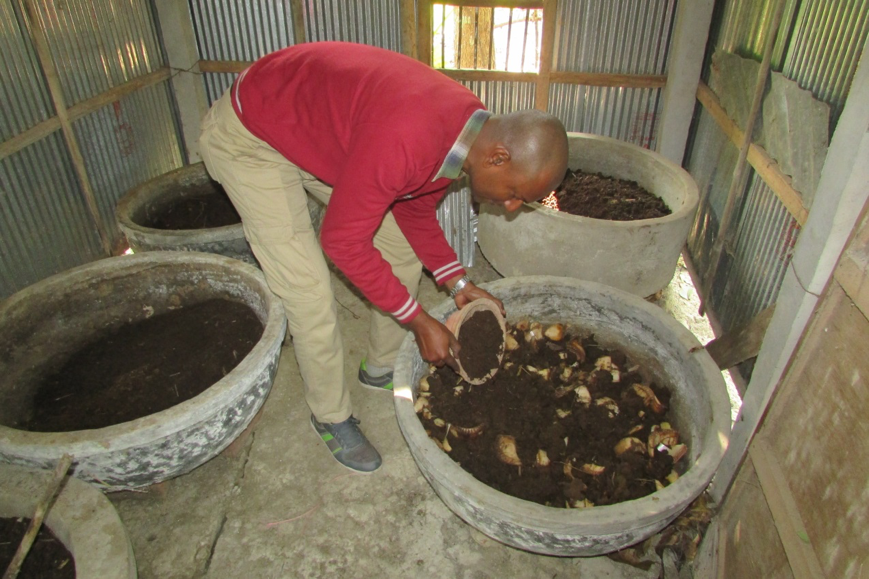 Vermicompost is produced in 'bins' where worms eat through food scraps, leaving a nutrient rich soil.