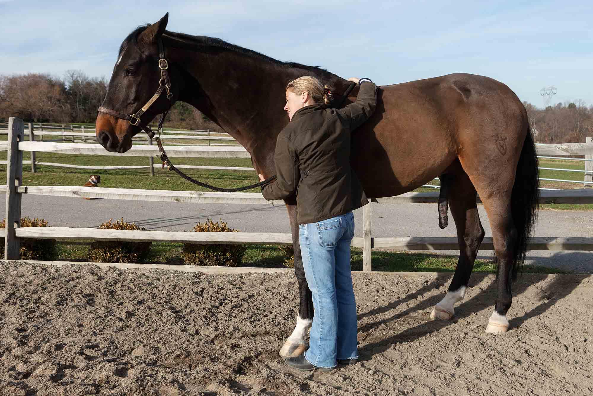 CareyKirkella-111119_Annabel_Horses_0600.jpg