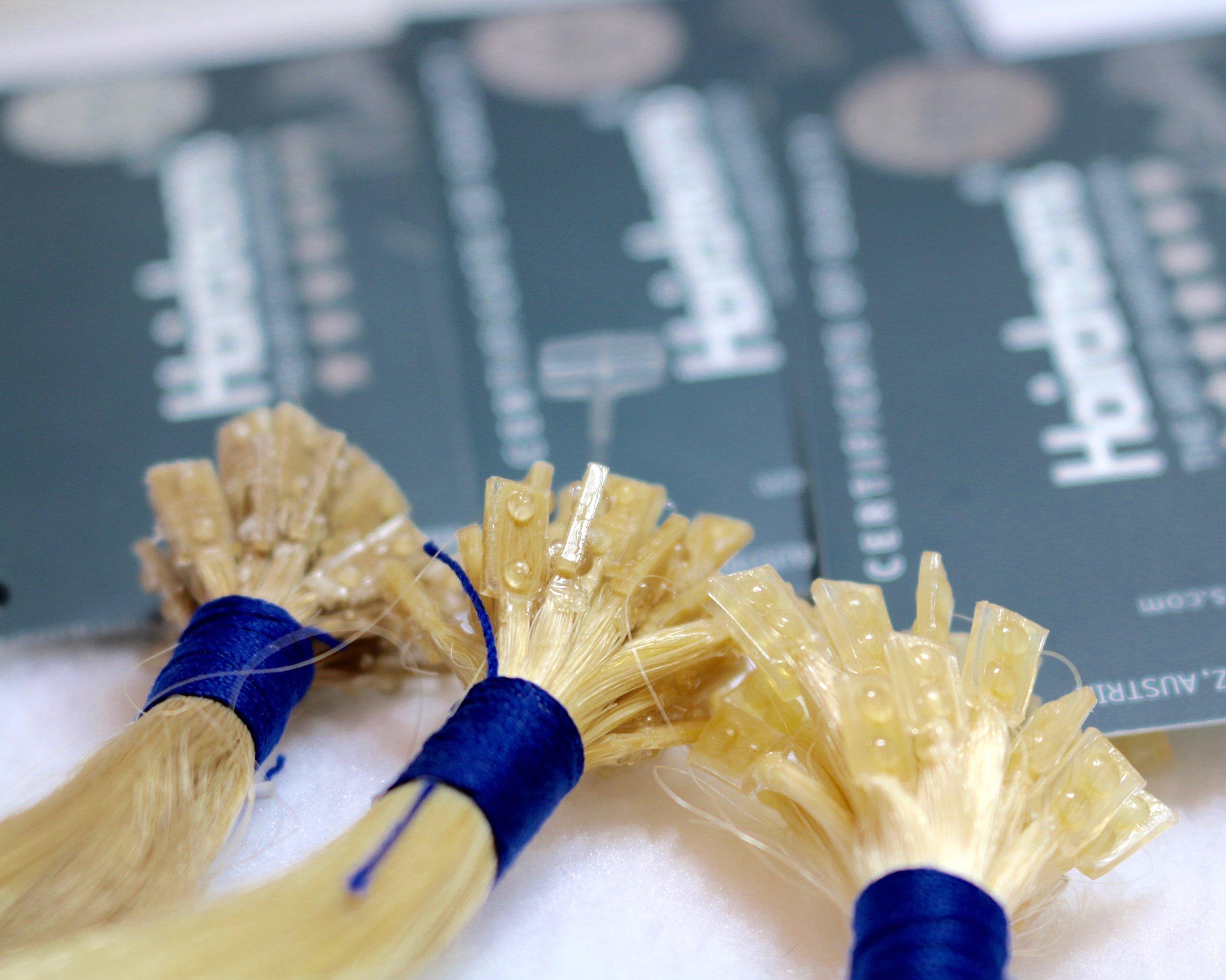 Hairdreams strands 1.jpg