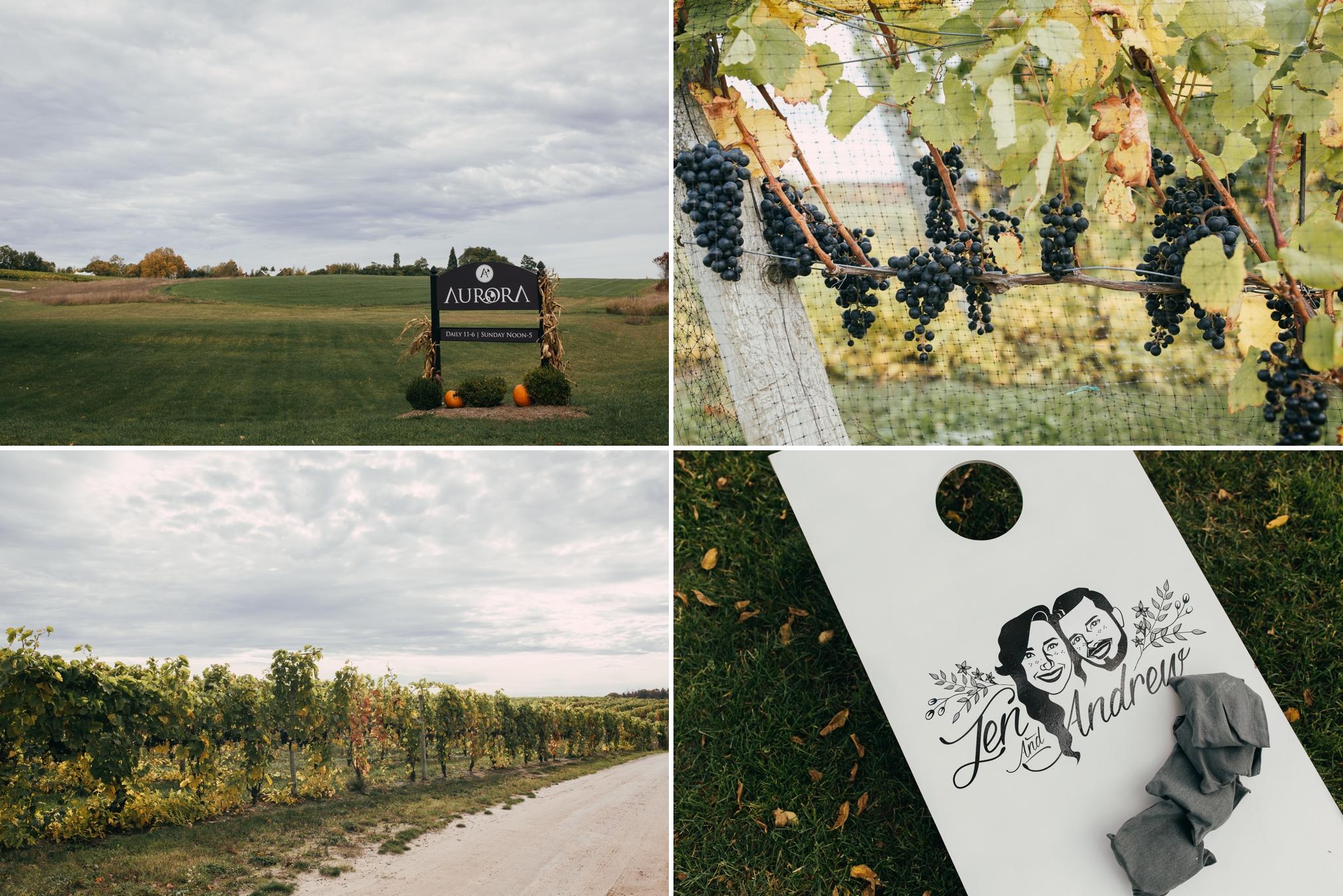 Heather-Nash-Photography-Aurora-Cellars-Wedding-Leelanau-Peninsula-Michigan_0090.jpg