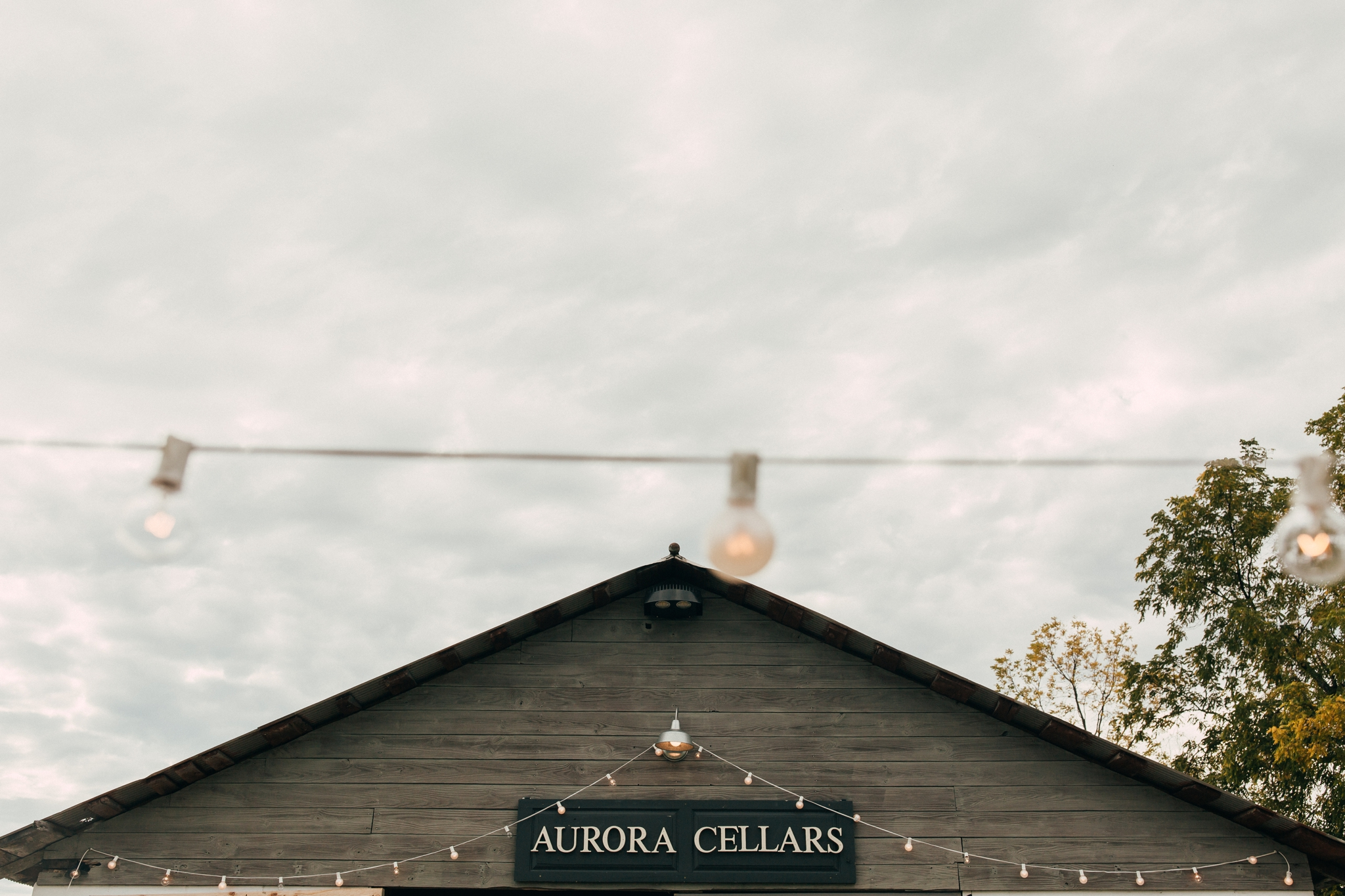 Heather-Nash-Photography-Aurora-Cellars-Wedding-Leelanau-Peninsula-Michigan_0096.jpg