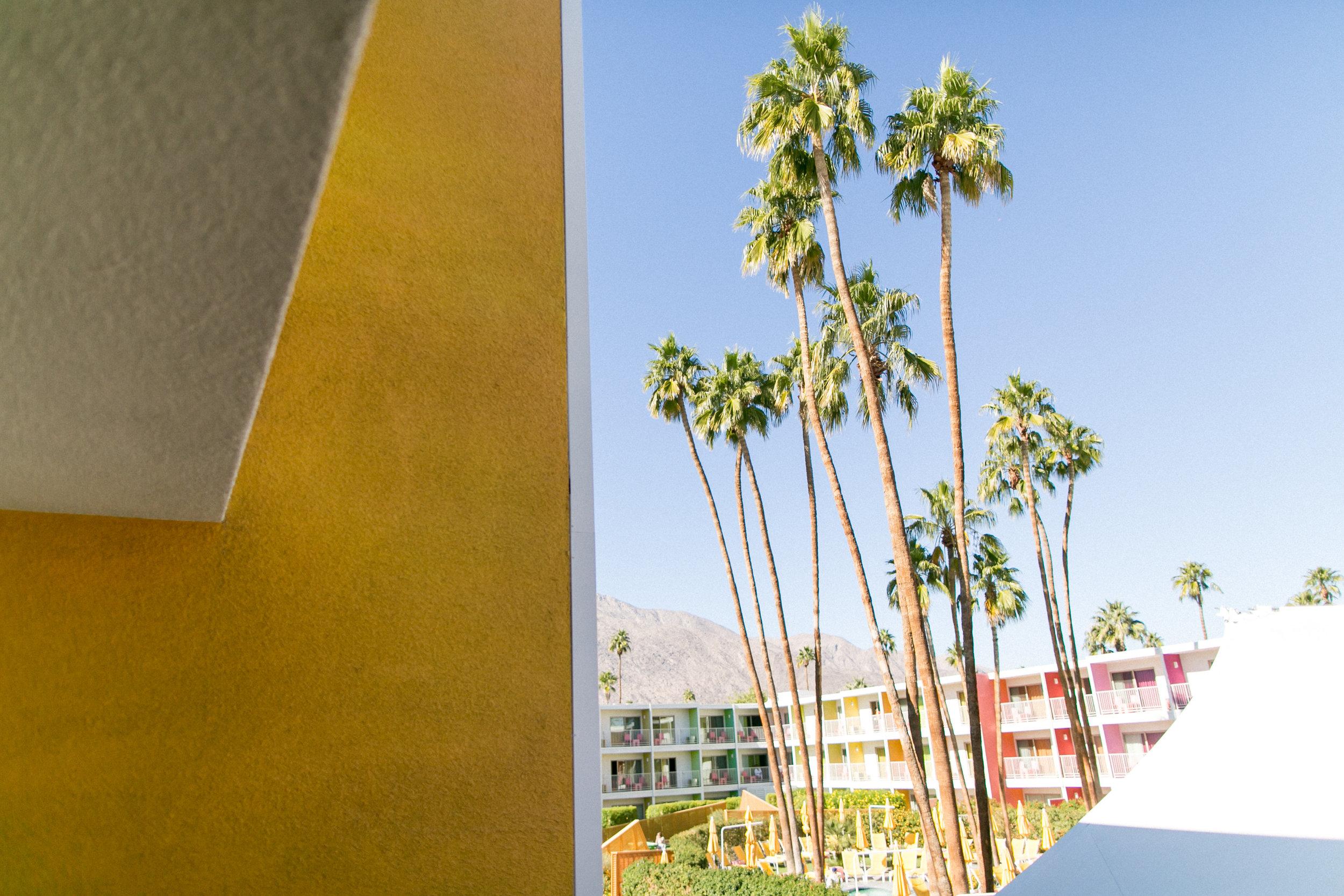 Kate Tikhomirova-11 23 Palm Springs Part 1-0040.jpg